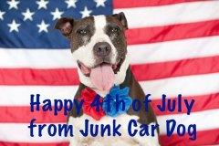 July-4th-dog